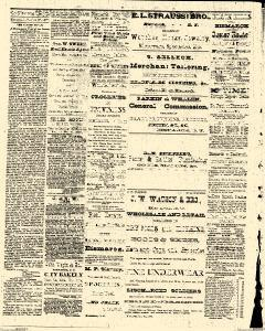 Bismarck Weekly Tribune, June 27, 1877, Page 2
