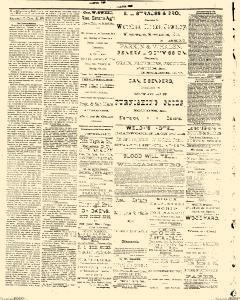 Bismarck Weekly Tribune, March 12, 1878, Page 2