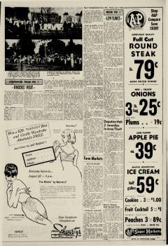 Dover Daily Reporter, August 17, 1964, Page 9