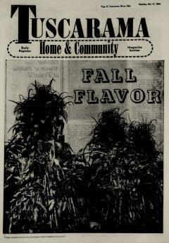 Dover Daily Reporter, October 17, 1964, Page 17