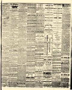Allen County Democrat, February 20, 1867, Page 3