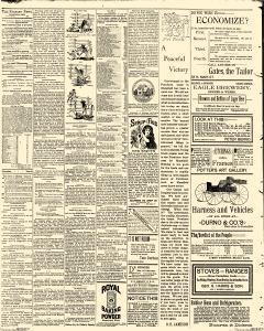 Mansfield Evening News, June 04, 1891, Page 2