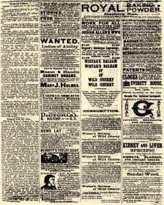 Daily Star, December 15, 1877, Page 2