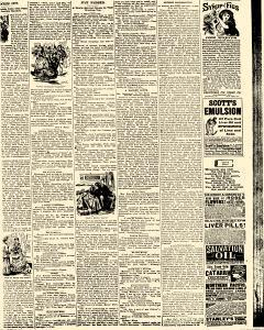 Salem Daily News, February 01, 1890, Page 3