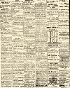 Salem Daily News, February 01, 1890, Page 4