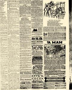 Salem Daily News, February 01, 1890, Page 7