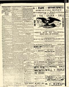 Salem Daily News, February 07, 1890, Page 4