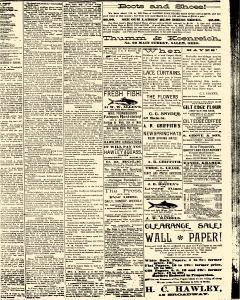 Salem Daily News, February 19, 1890, Page 3