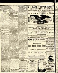 Salem Daily News, February 19, 1890, Page 4