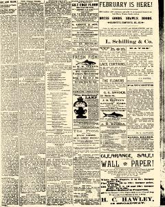 Salem Daily News, February 20, 1890, Page 3