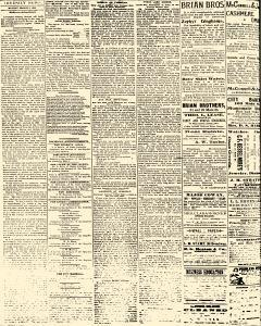 Salem Daily News, March 03, 1890, Page 2