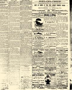 Salem Daily News, March 03, 1890, Page 3