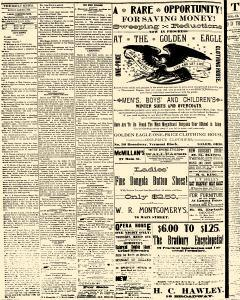 Salem Daily News, March 03, 1890, Page 4