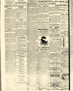 Salem Daily News, March 04, 1890, Page 2