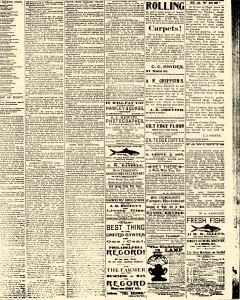 Salem Daily News, March 04, 1890, Page 3