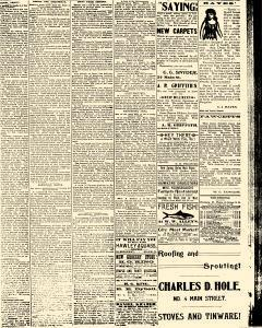 Salem Daily News, March 13, 1890, Page 3