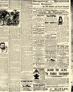 Salem Daily News, March 14, 1890, Page 3