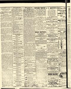 Salem Daily News, March 26, 1890, Page 2