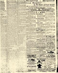 Salem Daily News, March 26, 1890, Page 3