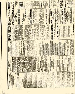 Salem Daily News, March 27, 1890, Page 2
