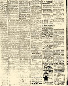 Salem Daily News, March 27, 1890, Page 3