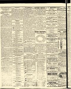 Salem Daily News, March 28, 1890, Page 2