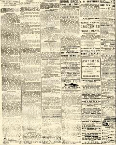 Salem Daily News, April 21, 1890, Page 2