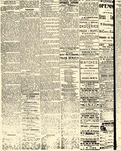 Salem Daily News, April 28, 1890, Page 2