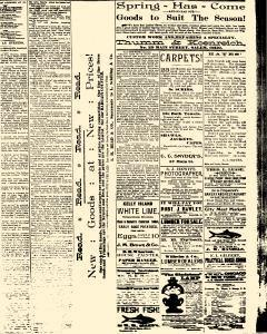 Salem Daily News, April 30, 1890, Page 3