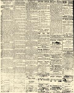 Salem Daily News, May 22, 1890, Page 2
