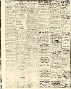 Salem Daily News, June 03, 1890, Page 2