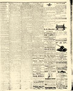 Salem Daily News, June 03, 1890, Page 3