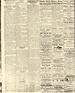 Salem Daily News, June 11, 1890, Page 2