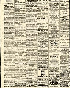 Salem Daily News, June 20, 1890, p. 2
