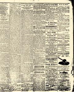Salem Daily News, June 24, 1890, Page 3