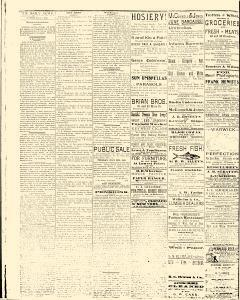 Salem Daily News, July 07, 1890, Page 2