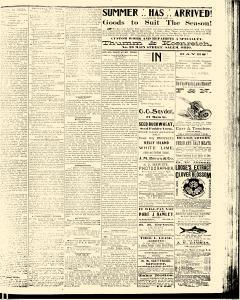 Salem Daily News, July 07, 1890, Page 3