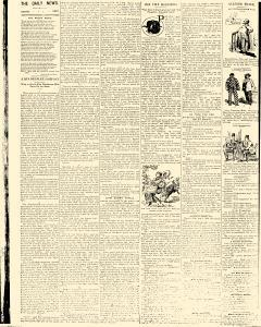 Salem Daily News, July 19, 1890, Page 2