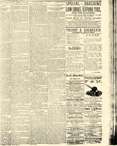 Salem Daily News, August 01, 1890, Page 3