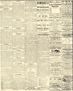 Salem Daily News, August 04, 1890, Page 2