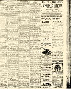 Salem Daily News, August 04, 1890, Page 3