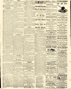 Salem Daily News, August 13, 1890, Page 2