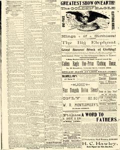 Salem Daily News, August 13, 1890, Page 4