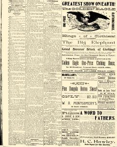 Salem Daily News, August 18, 1890, Page 4