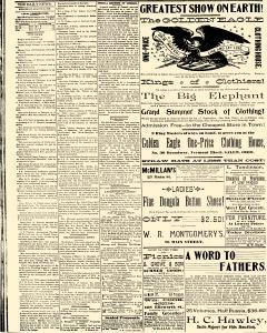 Salem Daily News, August 20, 1890, Page 4