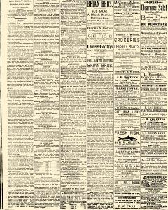 Salem Daily News, August 21, 1890, Page 2