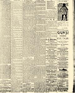 Salem Daily News, August 21, 1890, Page 3