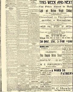 Salem Daily News, August 21, 1890, Page 4