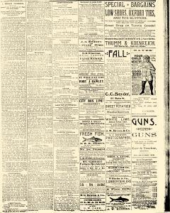 Salem Daily News, August 25, 1890, Page 3