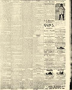 Salem Daily News, August 26, 1890, Page 3